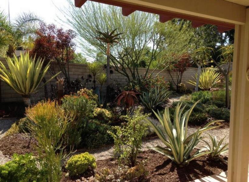landscapers-orange-county-california-7