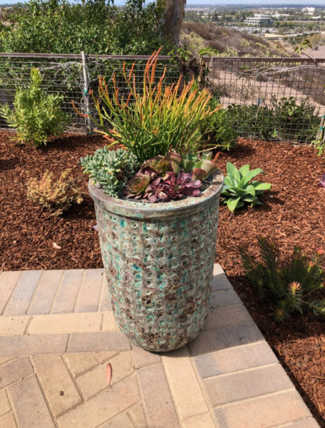landscaping-services-california-5